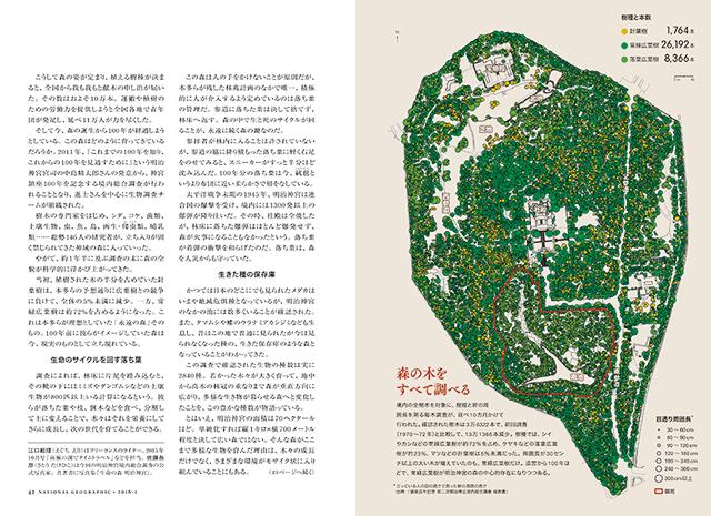 3万本超の樹木を樹種や幹の太さと記した地図